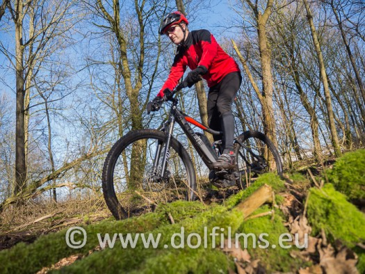 stockfoto mountain biker forest