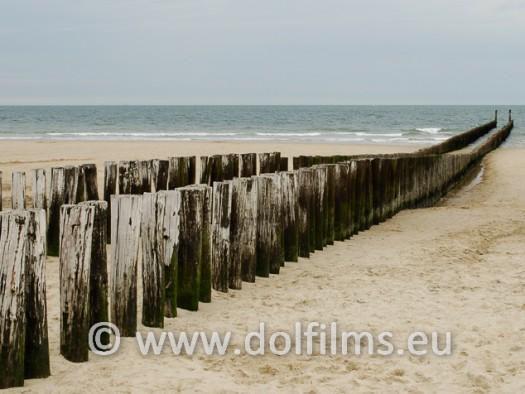 stock photo Dutch coast