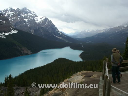 stock photo Canada Peyto Lake