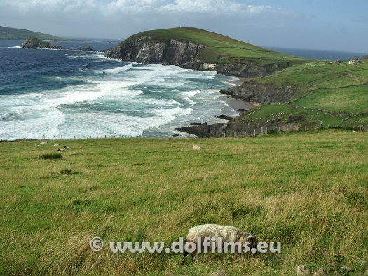 stock photo Ireland Dingle